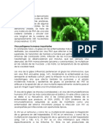 Viroides.docx