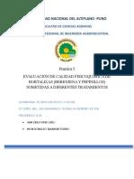 practica 5UNIVERSIDAD NACIONAL DEL ALTIPLANO.doc