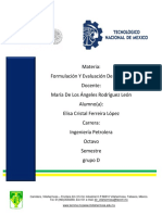 presentaciones reportes dual.docx