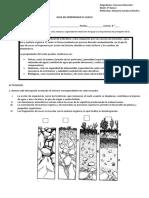 6° evaluación composición del suelo.docx