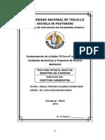 TESIS MAESTRIA  - Francisca Elizabeth Cerna Rubio.pdf