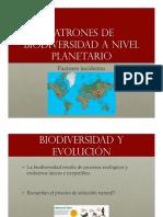 Patrones de Biodiverdidad a Nivel Planetario