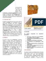 egipto guia.docx