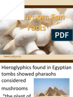 Mushroom Facts for Cafeteria Final