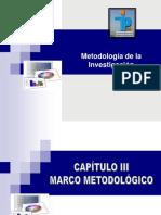 Instr Capitulo III Marco Metodolagico