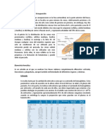 Localización de venas para Venupunción.docx