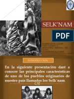 Los Selknam