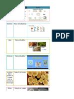 tabla de seres vivos biologia.xlsx