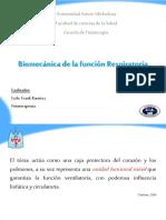 Kinesiologia de torax