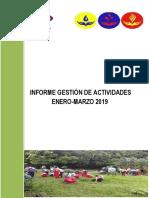 Informe Trimestral Plan de Trabajo 2019.docx