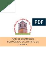 Plan Economico-Livitaca-1.pdf