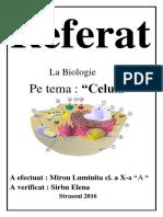 Referat2.docx