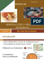 06-Reproduccion y Crecimiento Microbiano 2019