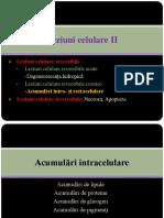Curs 2 Leziuni Celulare _2018-2019