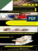 Boletín SISAS No 1 -  Investigación IDIPRON