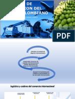 2-Logistica-y-Exportacion-de-mango-Mauricio Casas.pdf