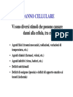 Danno Cellulare - Danno Ipossico - Danno Da Ischemia-riperfusione
