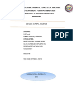 monografia de envase.docx