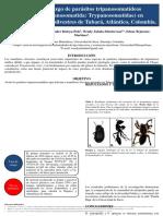 Complemento Taller Origen de La Biodiversidad
