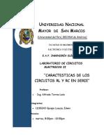 245281838-Universidad-Nacional-Mayor-de-San-Marcos-Informe-Final-n3.docx