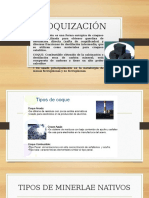 COQUIZACIÓN.pptx