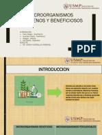 Microorganismos Patógenos y Beneficiosos
