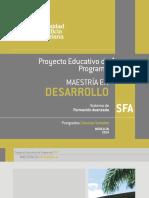 PEP-MAESTRIA-DESARROLLO.PDF