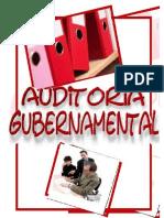 aditoria gubernamental.docx