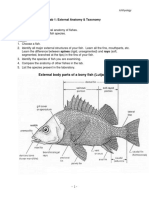 1_external Anatomy and Taxonomy