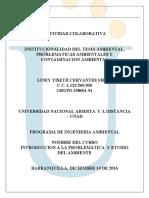 Actividad Colaborativa- Liney Cervantes (1)