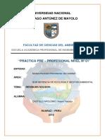 PLAN-DE-PRACTICAS-MUNICIPALIDAD.docx