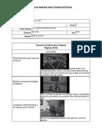 Formato Análisis Estético-convertido.docx