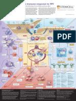 WA10015-Immune_Response_HIV.pdf