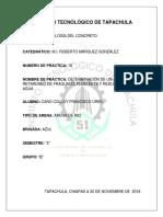 PRACTICA 16 URIEL.docx
