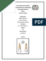 INCISIVO LATERAL SUPERIOR.docx