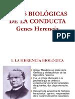 BASES BIOLOGICAS DE LA CONDUCTA CADL.ppt