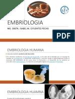 EMBRIOLOGIA-1_366