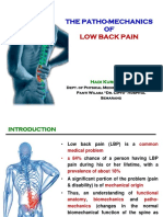 The Patho-Mechanics of LBP