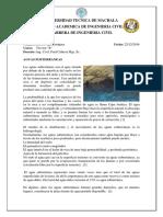 geo consulta.docx