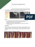 Endodoncia Grupo 4 Perforaciones y Falsos Conductos.docx