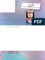 Resumen en Diapositivas