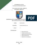 TRABAJO DE INVESTIGACIÓN  en proceso.docx