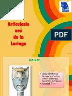 6.Articulaciones de Laringe