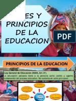 FINES Y PRINCIPIOS.pptx