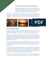 COLORES EN LA NATURALEZA.docx