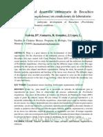 Descripción Del Desarrollo Embrionario de Bocachico (Prochilodus Magdalenae) en Condiciones de Laboratorio.