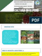 La Agricultura en El Perú Ppt Listo