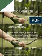 Gestión en el medio ambiente.pptx