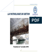 Pathologieb_ton07112016.pdf