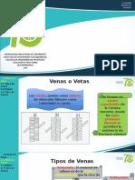 venas _12.pptx
